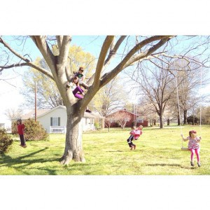 #6littlelands in a tree. I planned to clean and straighten…