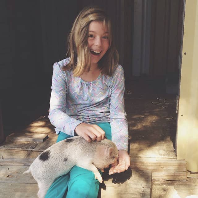 #cloverthepig #miriamalayna #animaltherapy