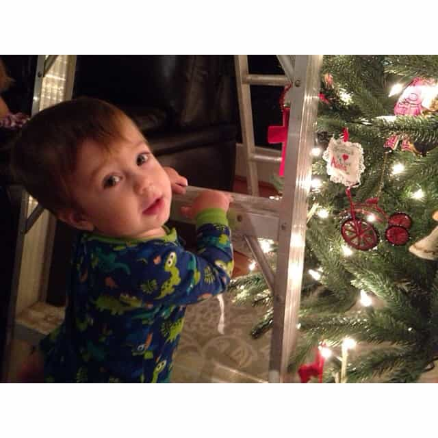 A Christmas Tree and a ladder in the house. Toddler heaven, Momma purgatory #jonjon #trouble #busytoddler #nonstopmotion