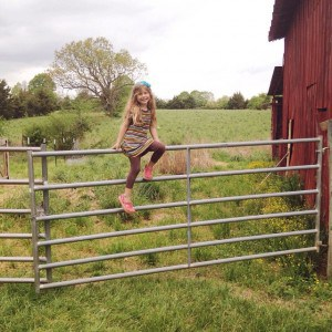 There's something irresistible about climbing a gate. #peytonruth #farmkid #farmlife
