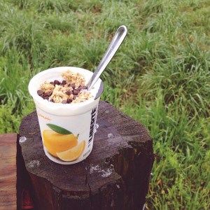 Finding my #yogurtperfection and trying to ignore the muddy toddler…