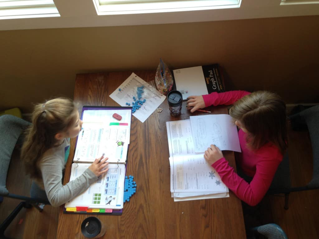 Big kid homeschooling