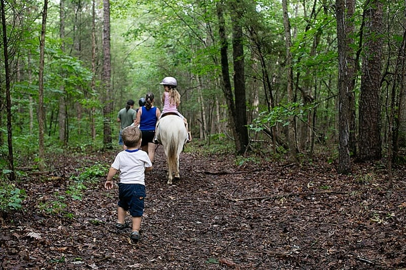 Dreams come true horse trail riding