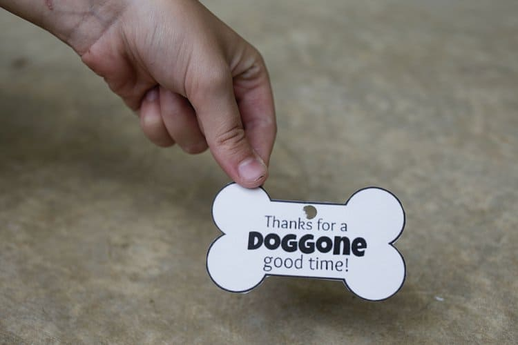 Thanks for the Doggone Good Time DIY Hostess Gift for dogs