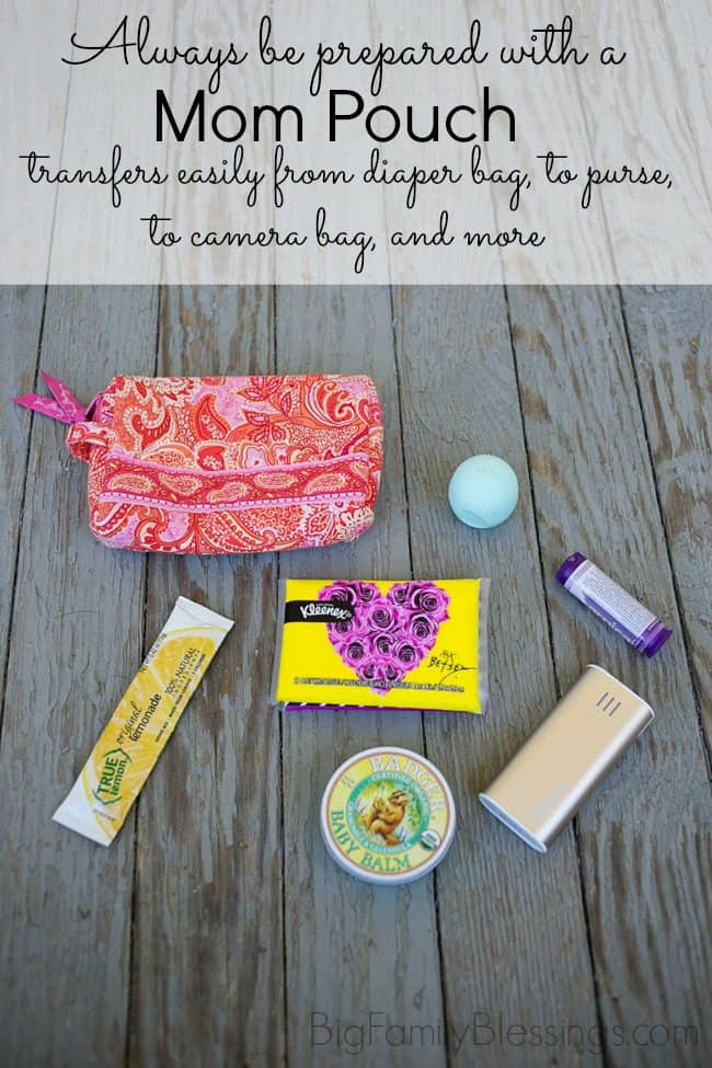 Always be prepared with this easy to grab Mom Pouch. Transfer it from diaper bag, to purse, to camera bag and more/