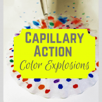 Capillary Action Color Explosions!
