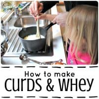 How to make Curds and Whey – Go Science Kids