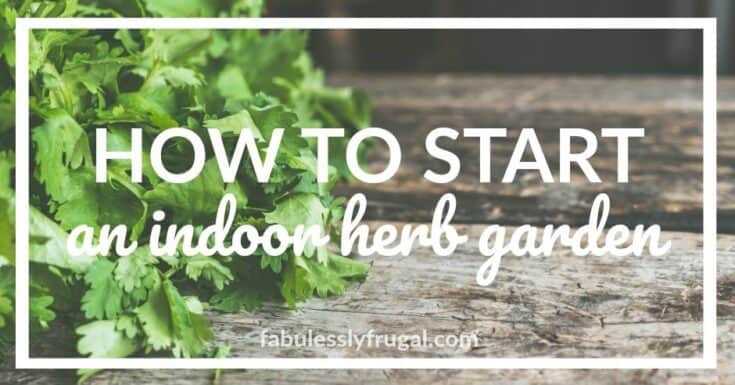 How to Start an Indoor Herb Garden (8 Essential Tips)