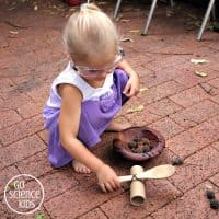Easy Upcycled Catapult {STEM goes green} – Go Science Kids