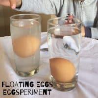 Floating Eggsperiment