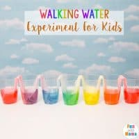 Walking Water Experiments For Kids